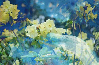 Garden Spirits Poster by John Fish