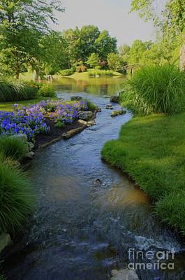 Garden Stream Hdr #9795 Poster