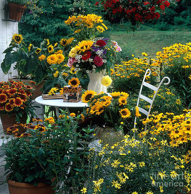 Garden With Table And Chair Poster