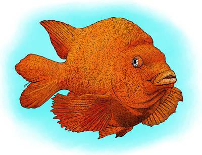 Garibaldi Fish Poster
