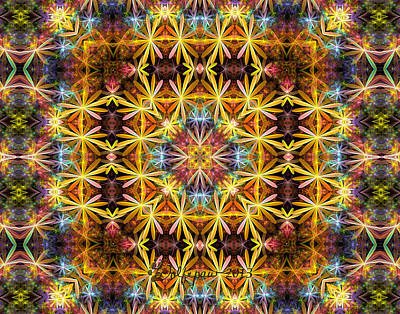 Gasket Kaleidoscope Poster by Peggi Wolfe