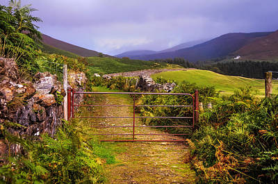 Gates On The Road. Wicklow Hills. Ireland Poster