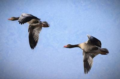Geese Flying Poster by Tommytechno Sweden