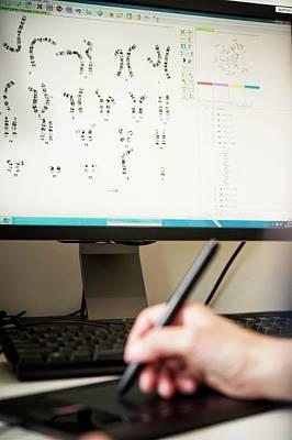 Genetic Karyotype Analysis Poster by Arno Massee