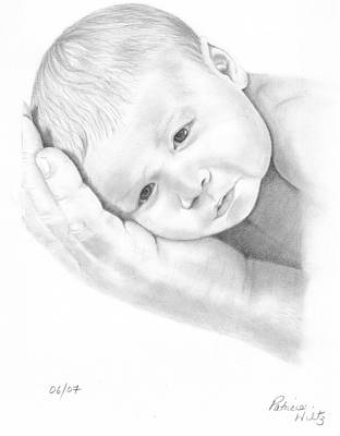 Poster featuring the drawing Gentle Innocence by Patricia Hiltz