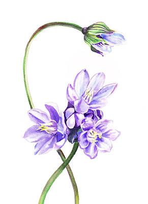 Gentle Purple Flowers Poster by Irina Sztukowski