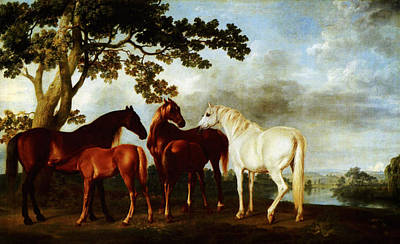 Poster featuring the painting Horses by George Stubbs