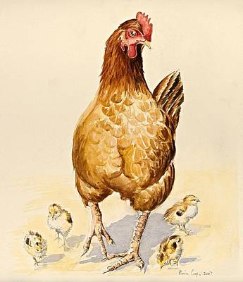 George's Hen And Her Chicks Poster by Alison Cooper