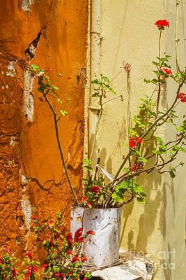Geranium In Mediterranean Corner Poster by Patricia Hofmeester