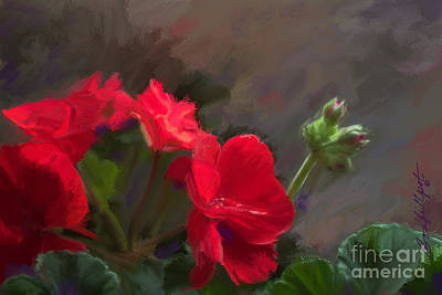 Geranium In Red Poster
