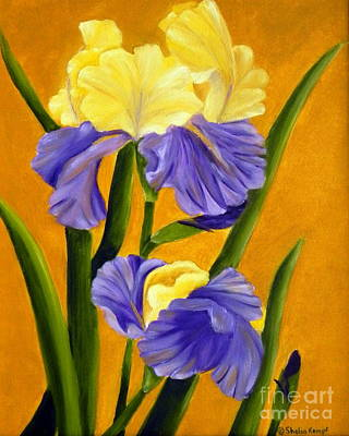 Poster featuring the painting German Bearded Iris  by Shelia Kempf