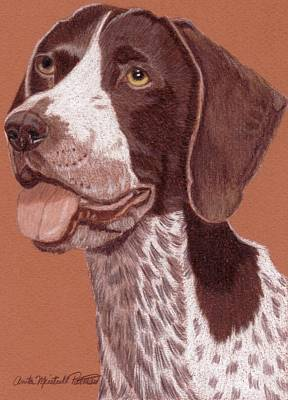 German Shorthair Pointer Vignette Poster