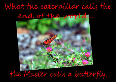 Get Well Caterpillar Greeting Card Red Font Poster