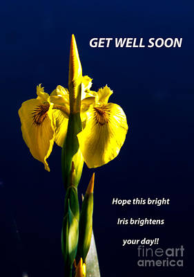 Get Well Soon Poster by Robert Bales