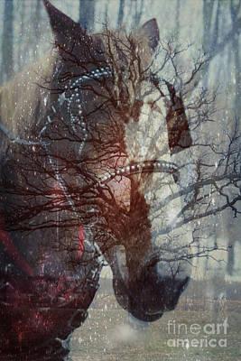 Ghost Horse Poster by Nancy TeWinkel Lauren