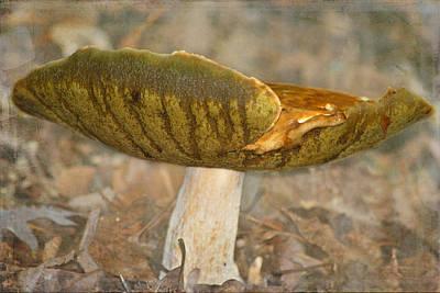 Giant Mushroom Poster