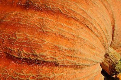 Giant Pumpkin Poster by Luke Moore
