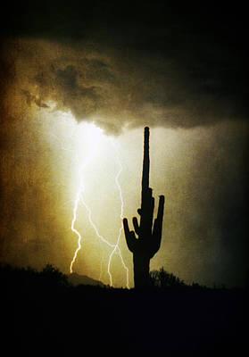 Giant Saguaro Lightning Spiral Fine Art Photography Print Poster by James BO  Insogna