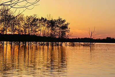 Gilded Sunset Poster