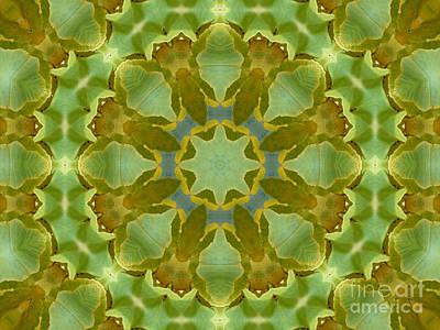 Ginkgo Leaf Kaleidoscope Mandala Poster by MM Anderson