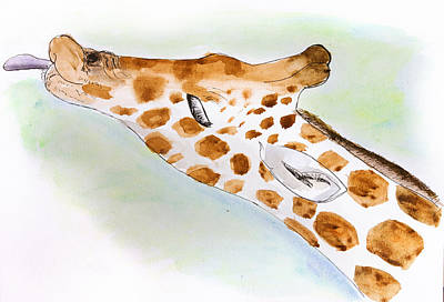 Giraffe With Tongue Out Poster by Pati Photography