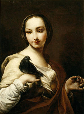 Girl With Black Dove Poster by Giuseppe Maria Crespi