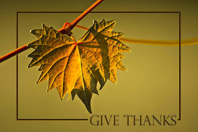 Give Thanks Poster by Carolyn Marshall