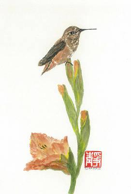 Glad Hummingbird  Poster