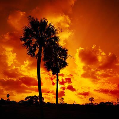 Glades Sunset Poster