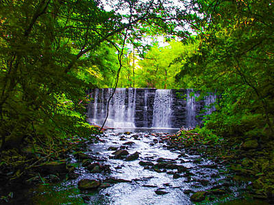 Gladwyne Waterfall In Spring Poster by Bill Cannon