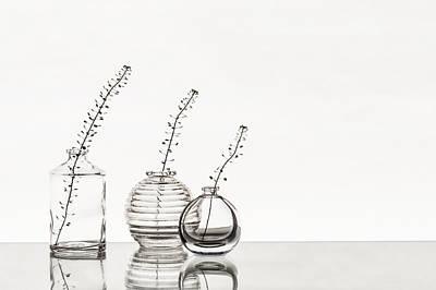Glass Vases Poster by Alina Kholopova
