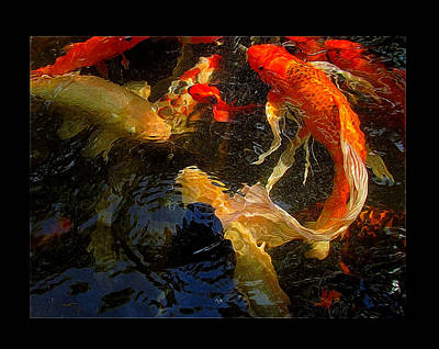 Glowing Koi Poster by Shannon Story