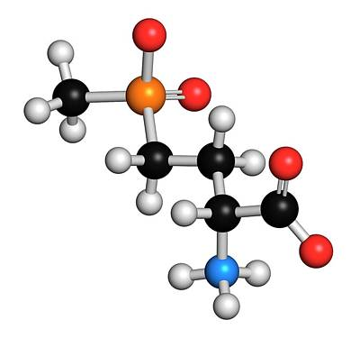 Glufosinate Herbicide Molecule Poster by Molekuul