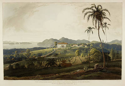 Glugor House And Spice Plantations Poster by British Library
