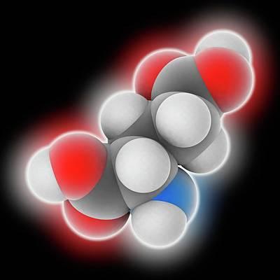 Glutamic Acid Molecule Poster by Laguna Design