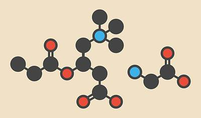 Glycine Molecule Poster by Molekuul
