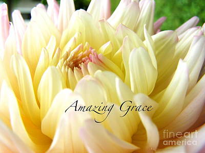 Poster featuring the photograph God's Amazing Garden by Margie Amberge