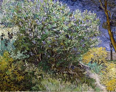 Gogh, Vincent Van 1853-1890. Lilac Poster by Everett