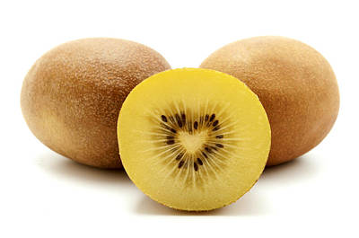 Poster featuring the photograph Gold Kiwifruit by Fabrizio Troiani