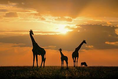 Golden Africa Poster
