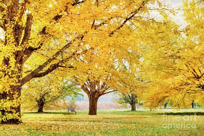 Golden Autumn Poster by Darren Fisher