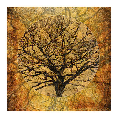 Golden Autumnal Trees Poster