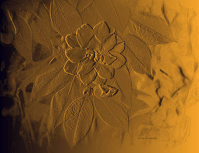 Golden Effulgence Poster by Jeanette C Landstrom