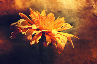 Golden Flower Poster