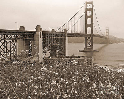 Golden Gate Bridge And Summer Flowers In Sepia Poster by Connie Fox