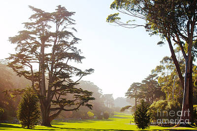 Golden Gate Park San Francisco Poster