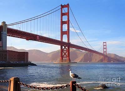 Golden Gate Seagull Poster by Inge Johnsson