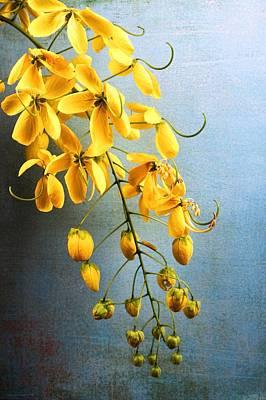 Golden Lantern II Poster by Chrystyne Novack