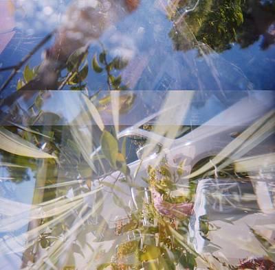 Golden Mean Holga Garden 1 Poster