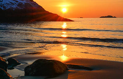 Golden Morning Singing Beach Poster by Michael Hubley